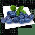 http://www.projetequipamentos.com.br/wp-content/uploads/2019/04/blueberrys-300x300-150x150.png